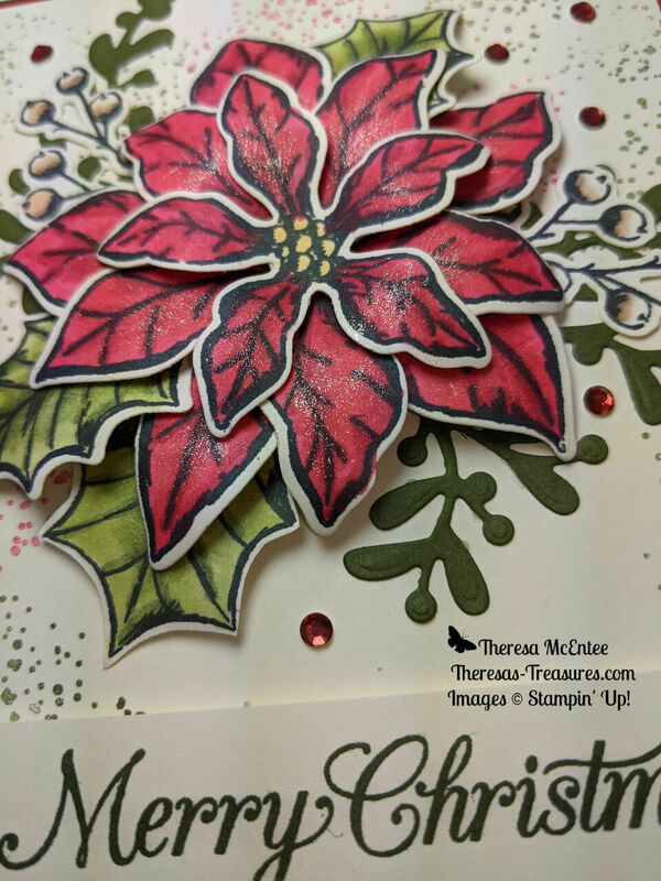Poinsettia petals close up sparkle wm