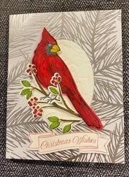 Day 5 cardinal