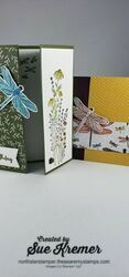 Stampin  up  dragonfly bundle north star stamper
