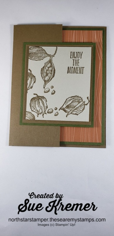 Stampin up enjoy the moment front north star stamper
