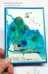 Wensbloemen met dragonfly dreams 3