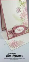Stampin up patterned paper jan 11 birthday north star stamper