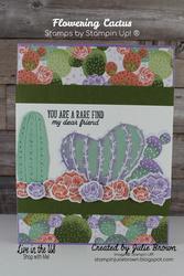 Img floweringcactus  1