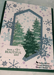 Winter woods snowflake wishes close up wm