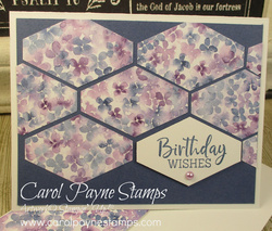Stampin up hydrangea hill fancy phrases tailored tag carolpaynestamps1