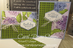 Stampin up hydrangea hill fancy phrases plaid carolpaynestamps1
