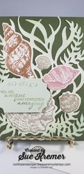 Stampin up friends are like seashells stamps die embossing folder north star stamper