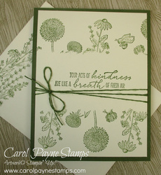 Stampin up garden wishes carolpaynestamps4