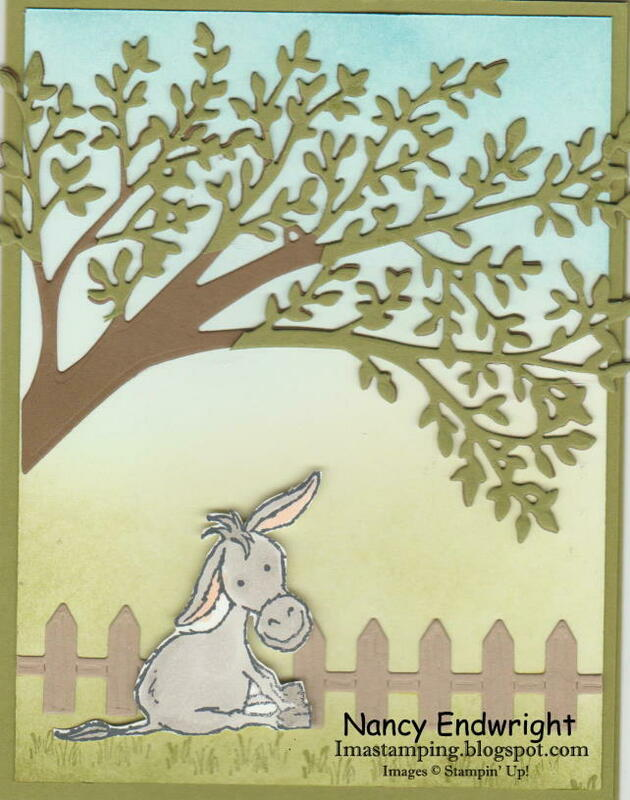 Darling donkey under a tree