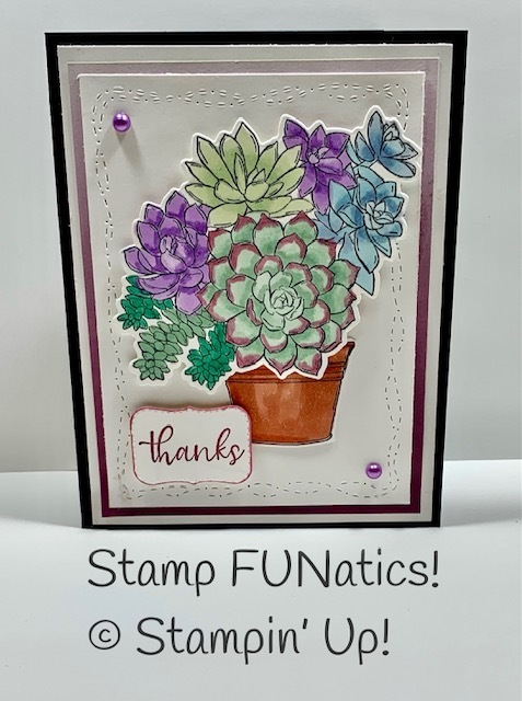 Simply succulents thanks card