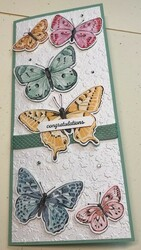 Butterfly bijou dsp card