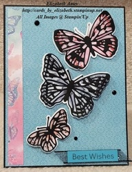 Butterfly card 2021 wm