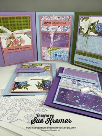 Stampin up hydrangea hill north star stamper