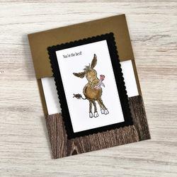 Donkey stella