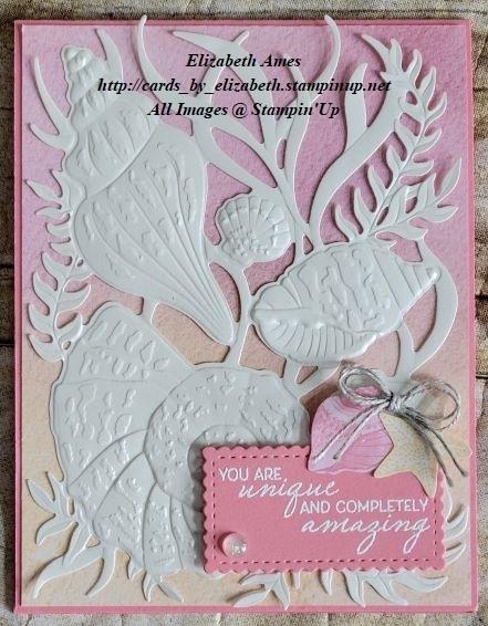 Seashells card wm