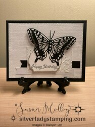 Butterfly brilliance2