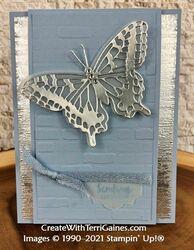 Fun fold butterfly card   4