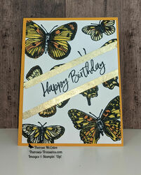 Stampin up butterfly brilliance straight wm