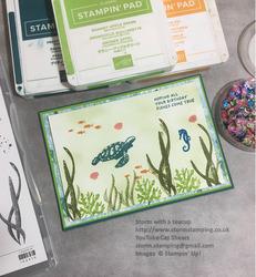 Megs card