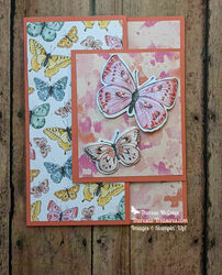Stampin up butterfly brilliance fun fold flat straight wm