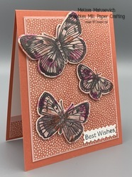 Butterfly brilliance stamped on dsp