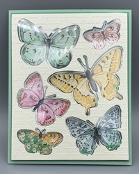 Butterfly brilliance shaker card