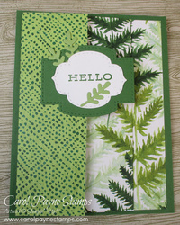 Stampin up forever fern carolpaynestamps
