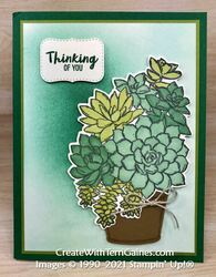 Simply succulents   11