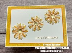 Daisy lane birthday card
