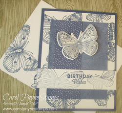 Stampin up misty butterfly brilliance carolpaynestamps1