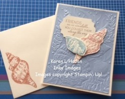 Seashells friendship card