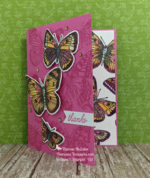 Stampin up butterfly brilliance open wm