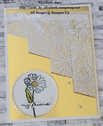 Drapery card gold wm