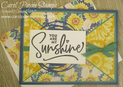 Stampin up ridiculously awesome carolpaynestamps1