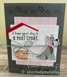 Pampered pets1
