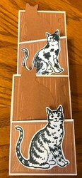 Crazy cat concertina card 1