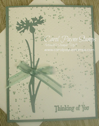 Stampin up quiet meadow carolpaynestamps1