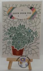 Soyeuse succulente ferm e sign