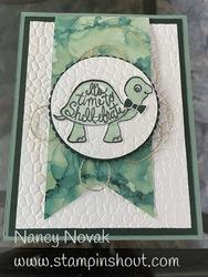 Turtle tab card