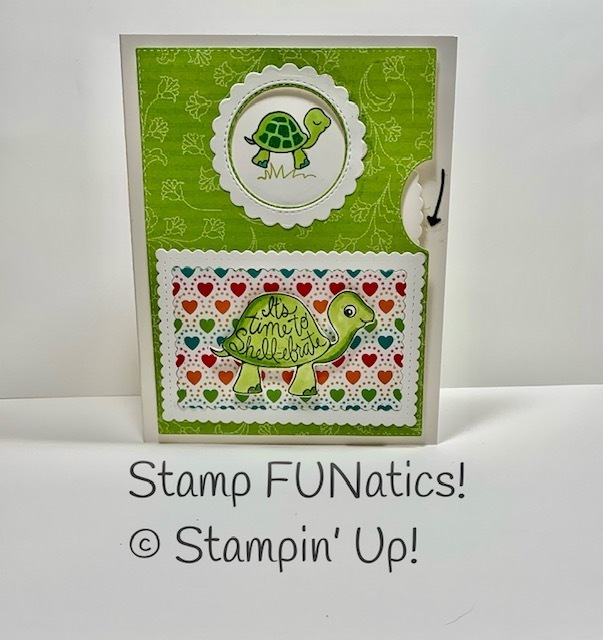 Turtle friends give it a whirl card
