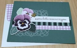 Pansy friendship card