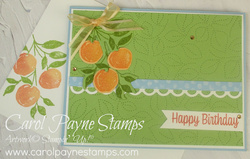 Stampin up sweet as a peach stitched greenery carolpaynestamps1