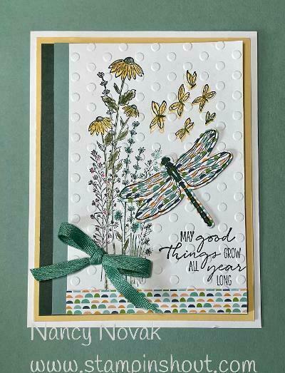 Newsletter june 10 2021 dragonfly  garden