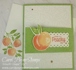 Stampin up sweet as a peach fun flap fold carolpaynestamps1  2