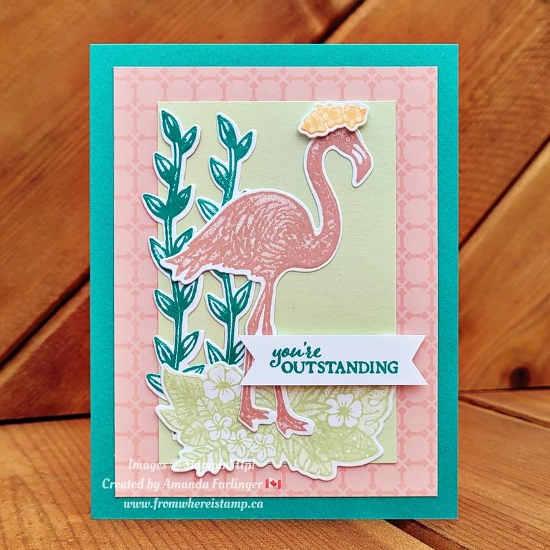 Flamingo 4colours fromwhereistamp