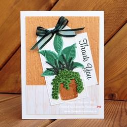 Plants thanks fromwhereistamp