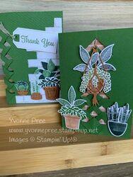 Plentiful plants 5 6   copy