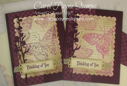 Stampin up brilliant wings quiet meadow carolpaynestamps3