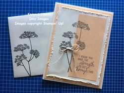 Queen anne s lace card