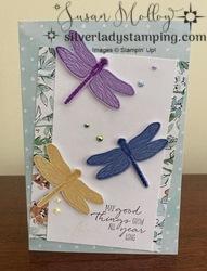 Dragonflies1